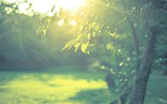 「家族と友達と食べて遊んで夏満喫」イベント-《月山マルシェ》2014年8月2日ついに初開催!!