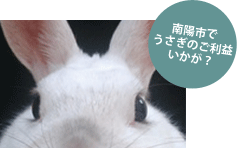 月結び_アイキャッチ