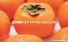 オラいの柿食う会2014_アイキャッチ