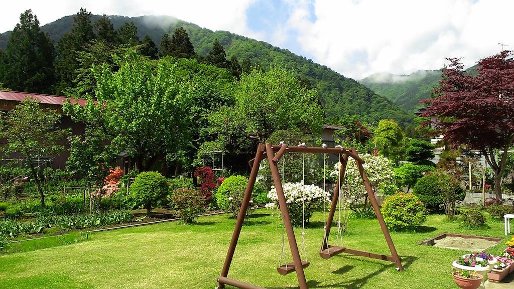 新緑の5月(裏庭)