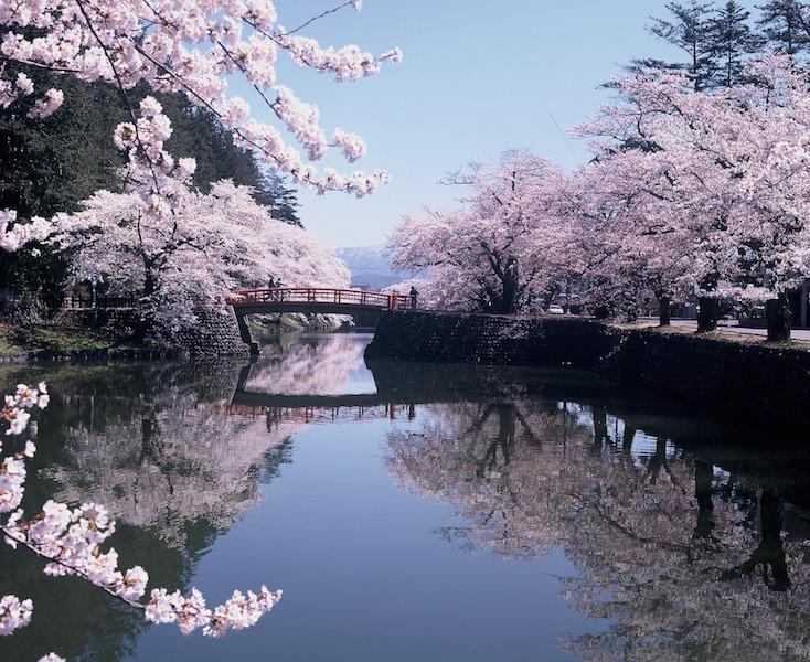 松ヶ岬公園