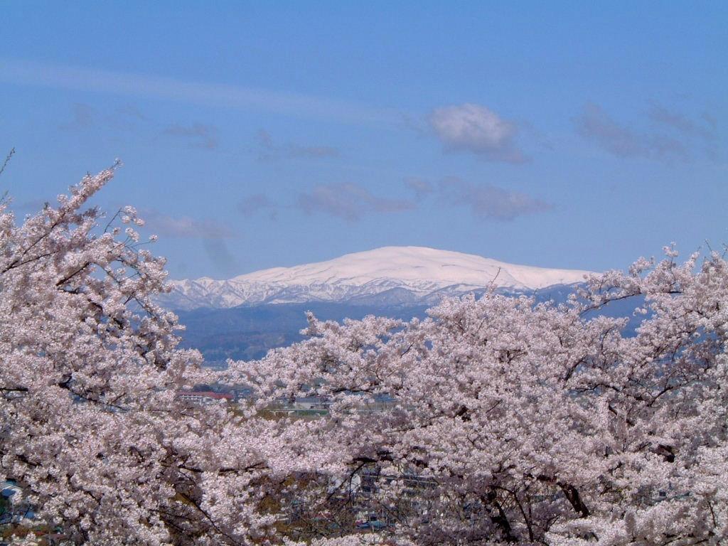 舞鶴山から見た月山